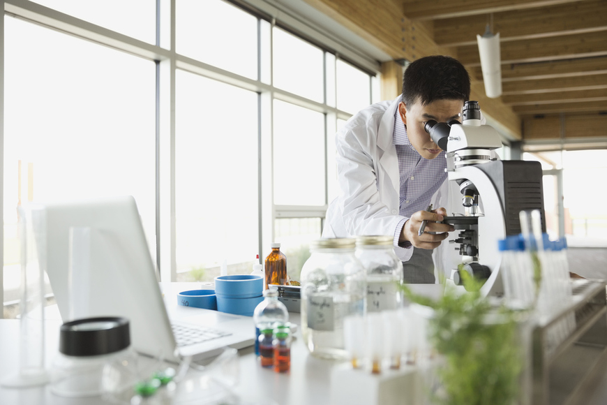 5 Alternative Career Paths for Life Science PhDs   Wiley